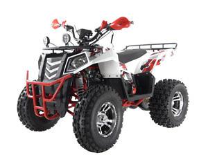Детский квадроцикл WELS 200cc EVO