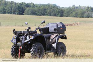 Квадрицикл Striker 700 EFI